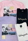 Tetra Ocean Sweat★Tetrapots店舗・WEB限定★